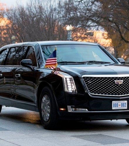 D9a719 trump limousin beast x220