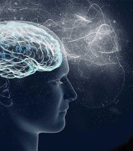 49f92f elon musk neuralink x220
