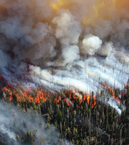 B420e4 siberia forest fire x220