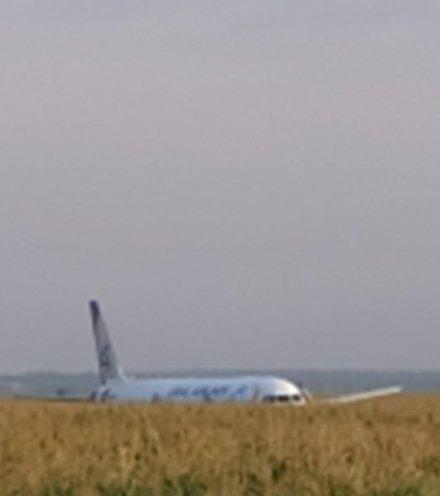 09b4ee russian plane birdstrike x220