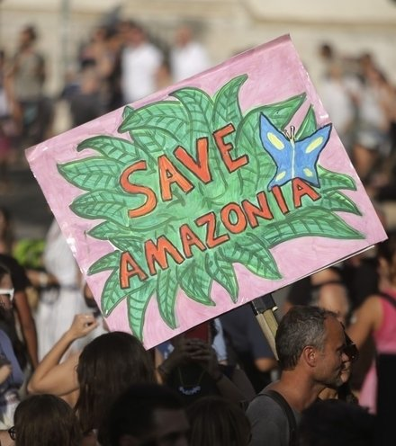 7233d5 save amazona x220