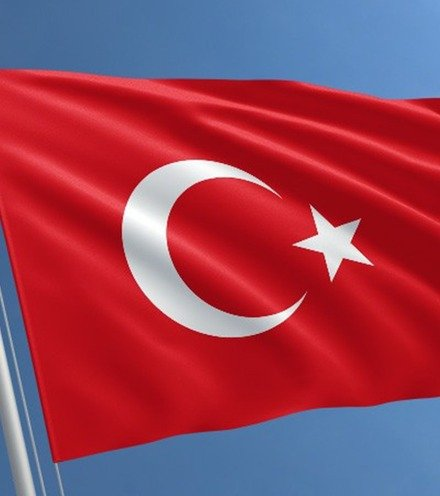 9e02a7 turkey flag std x220
