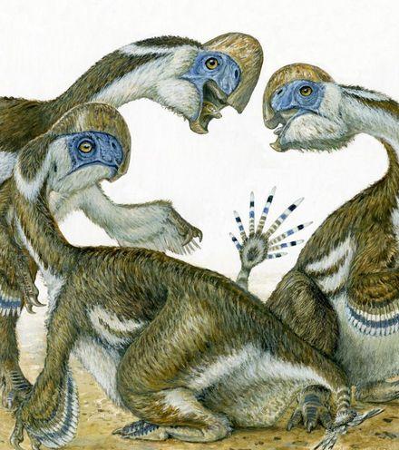 Tp0ptu oviraptors mongolian gobi x220