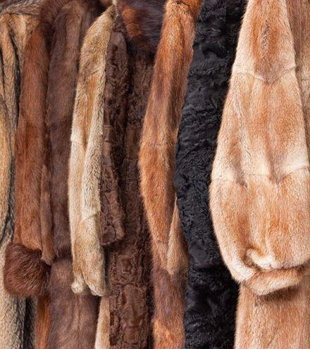 Jlad07 fur industry x220