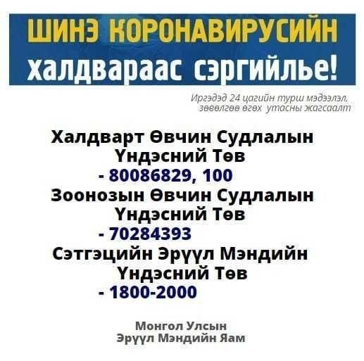 0b022d_84292813_947056525709730_6695784152525963264_n_x974 Коронавирусийн халдварын талаар худал мэдээлэл тараасан 20 гаруй хэргийг шалгаж байна
