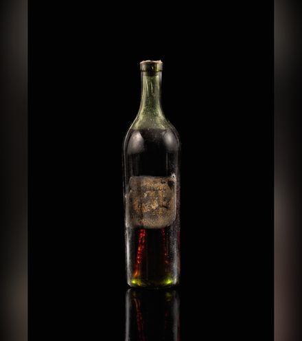 Tobyjc gautier cognac x220
