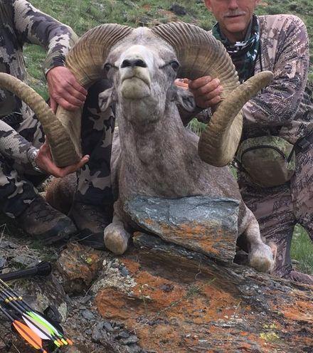 Vj4e33 palmer trophy hunting 1 x220