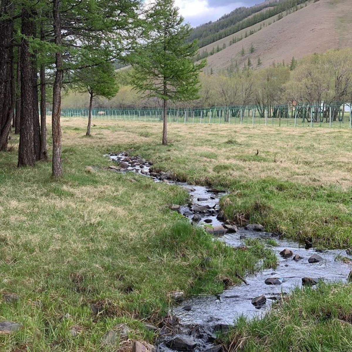 Тусгай хамгаалалтын газрыг нэмэгдүүлснээр усны нөөц сэргэж, түвшин нь нэмэгджээ