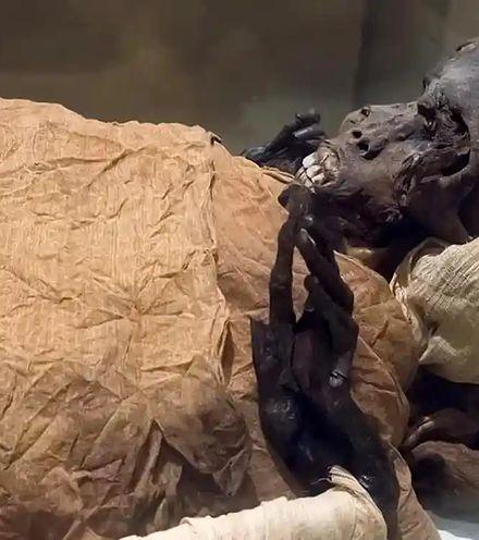 1413ni egypt pharao x220