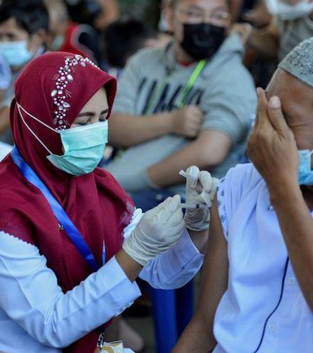 Meebvr indonesia vaccination x220