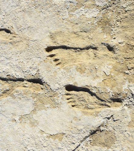 Mke0fu footprint america x220